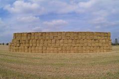 haystack гиганта поля Стоковые Фотографии RF