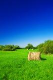 haystack поля зеленый стоковые изображения rf