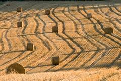 Haystack Stock Image