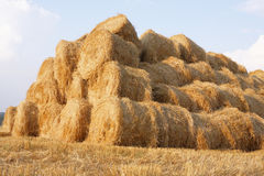 Haystack. Consists of bales of hay Royalty Free Stock Image