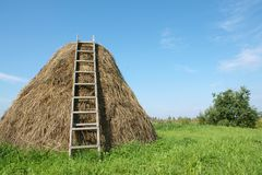 Haystack. With a ladder, a horizontal picture royalty free stock images