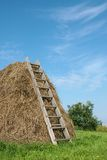 Haystack. With a ladder, a vertical picture royalty free stock photos