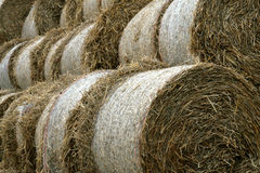 Haystack. Fields after harvest Royalty Free Stock Photography
