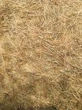 haystack photographie stock libre de droits