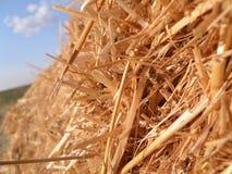 haystack Стоковое Изображение RF