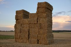 Haystack. On a harvested field stock photo