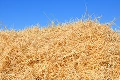 haystack стоковое фото