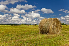 Haystack. Folded stack of hay on field Stock Image