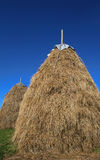 Haystack. Two stacks of dry hay against the blue sky Stock Photo
