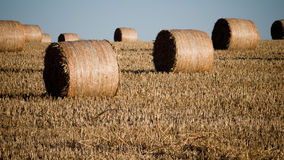 Haystack Stock Photography