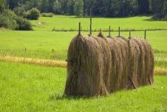 haystack Стоковая Фотография