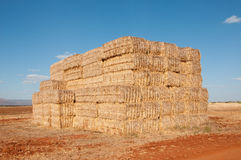 Haystack. Stock Photo