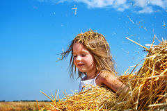 In a haystack Royalty Free Stock Photo