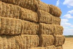 Haystack Stock Photo
