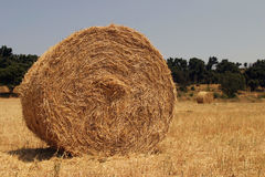 Haystack Royalty Free Stock Image