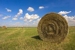 Haystack Royalty Free Stock Photo