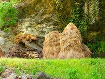 haystack Fotografia de Stock