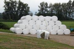 haystack Imagens de Stock Royalty Free