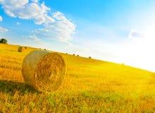 haystack photos stock