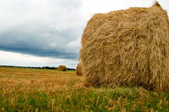 haystack Photographie stock