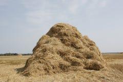 haystack images libres de droits