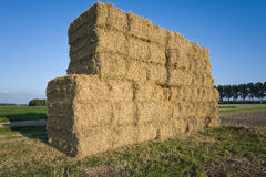 Haystack. Farmland in the Netherlands with haystack Royalty Free Stock Image