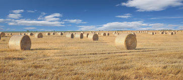 haystack against the blue sky Stock Image