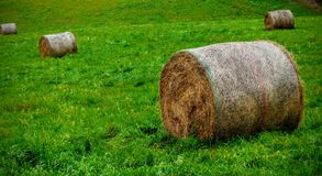 Haystack in agricultural landscape Stock Photo
