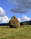 Haystack for animal feed Royalty Free Stock Photos
