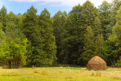 Haystack on background of deciduous forests and fields  grass. Beautiful sustainable landscape Stock Photo