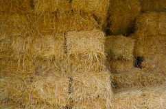 Haystack background. In a farm Royalty Free Stock Image