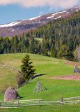 Haystack behind the fence on a grassy slope. Beautiful countryside scenery with coniferous forest on hillside of mountain with snowy top Royalty Free Stock Photo