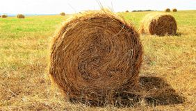 Haystack in  bright sunny day. Stock Photo