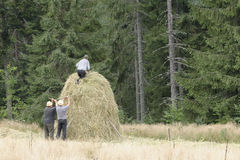 Haystack built by peasants Stock Photos