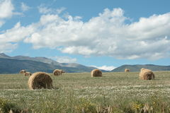 Haystack in cerdagne, Pyrenees. Languedoc region of france stock photos