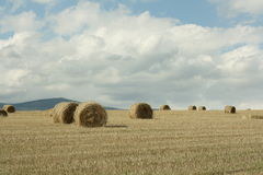 Haystack in cerdagne, Pyrenees. Languedoc region of france royalty free stock photos