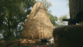 Haystack, cooking food over wood fire stock video footage