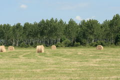 Haystack in countryside, France Stock Image