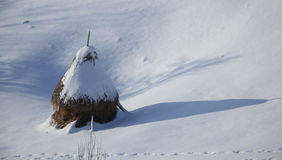 Haystack covered by snow Royalty Free Stock Images