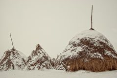 Haystack covered with snow Stock Photos