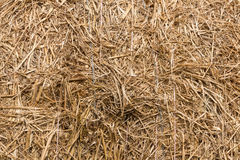 Haystack. Detials close up shot of Haystack royalty free stock photo