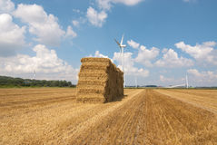 Haystack on dutch farmfield Stock Image
