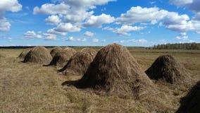 Haystack en el campo Foto de archivo libre de regalías
