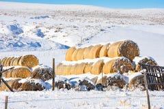 Haystack en invierno Imagen de archivo