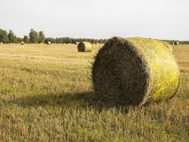 Haystack en un campo Foto de archivo