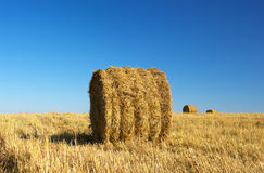 Haystack on the field Royalty Free Stock Image