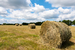 Haystack on a field Stock Photography