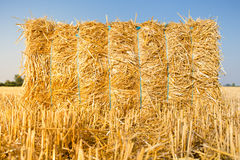 The haystack Stock Image