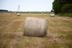 Haystack on the field Royalty Free Stock Images