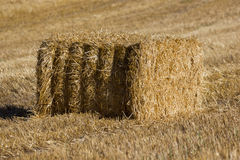 Haystack. In the field autumn Royalty Free Stock Image